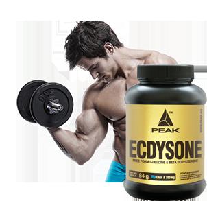 Ecdysterone