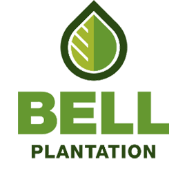 Bell Plantation Peanut Butter und Low Carb Produkte