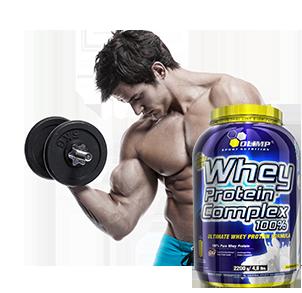 proteinpulver muskelaufbau