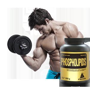 Phospholopide