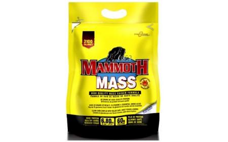 Mammoth Mass - 6800g