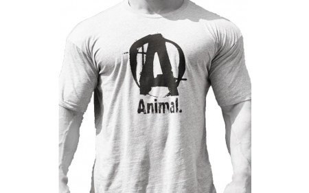 animal-logo-a-grey