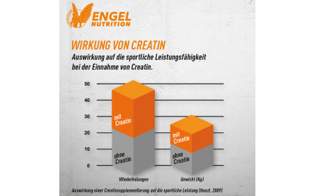 engel-nutrition-creatin-wirkung