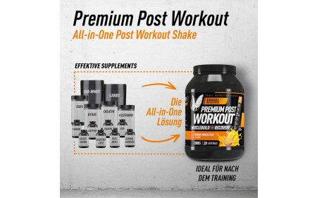 engel-nutrition-premium-post-workout-all-in-one-formula