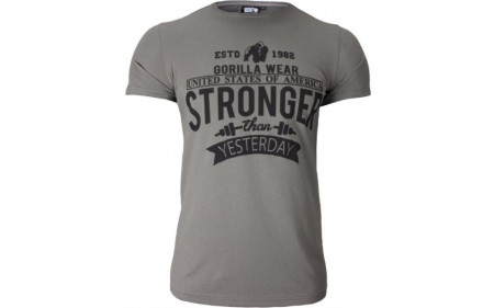 gorilla-wear-hobbs-t-shirt-grey.jpg