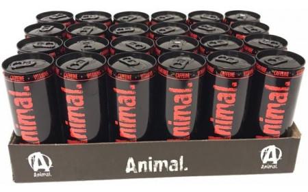 Universal Nutrition Animal NRG Drink - 24x 250ml