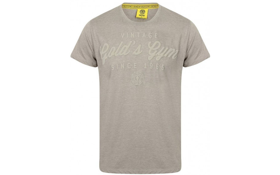 Golds Gym Emboss Print T-Shirt - Grey