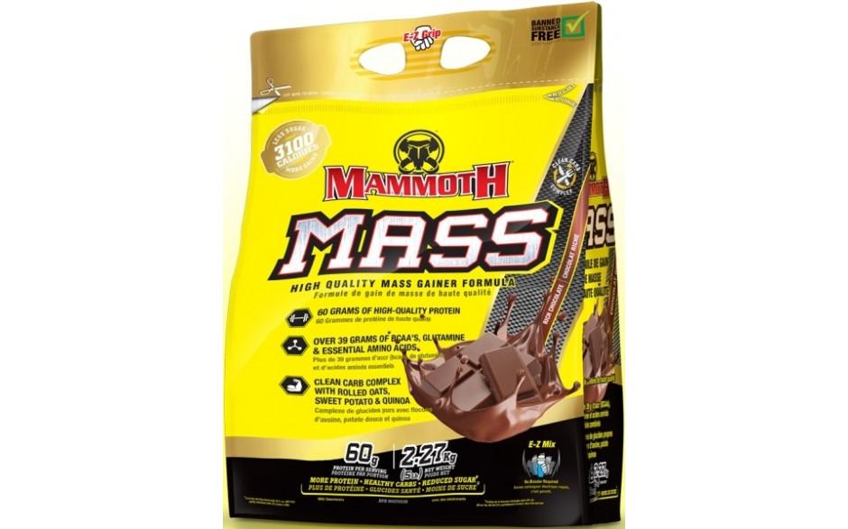 mammoth_chocholate