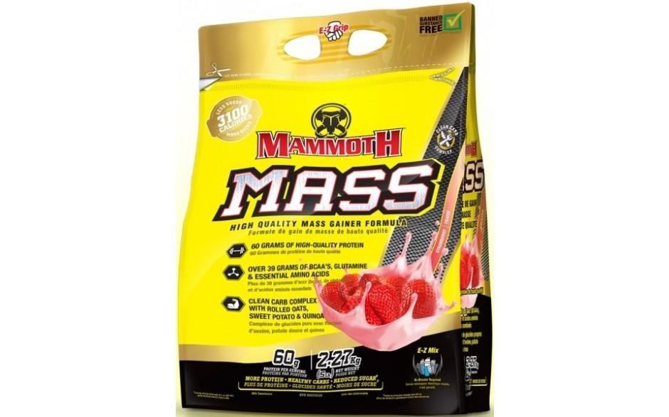 mammoth_strawberry