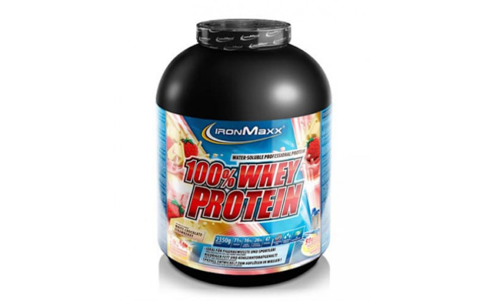 Ironmaxx 100% Whey Protein 2350g-Blueberry Cheesecake