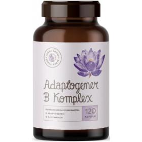 Alpha Foods Adaptogener B Komplex - 120 Kapseln