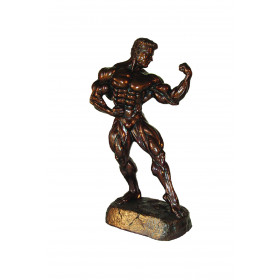 Bodybuilding Figur Man - Single Bizep 41 cm