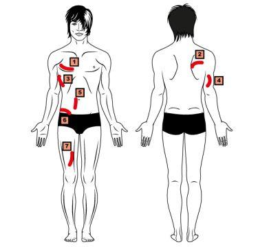 7 Faltenmethode Körperfettmessung