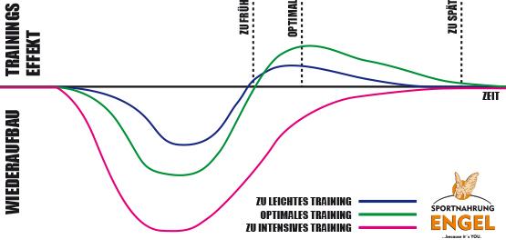Wie man Muskelermüdung nach dem Training reduziert