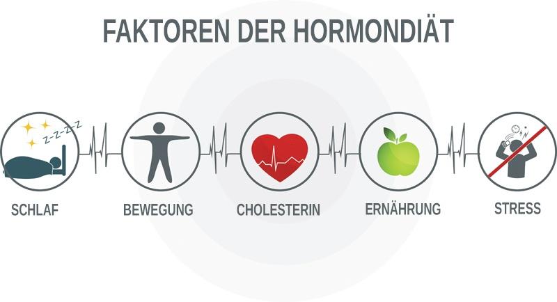 Mit diesen Faktoren kannst Du Deinen Hormonhaushalt in dieser Diät regulieren
