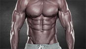 Moderates Ausdauertraining ist gut zum Muskelaufbau
