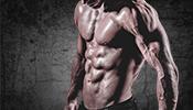 die besten Fette zum Muskelaufbau