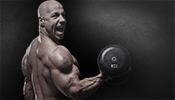Sojaprotein zum Muskelaufbau