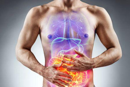 Nährstoffaufnahme im Darm beheben - Tipps von Profis