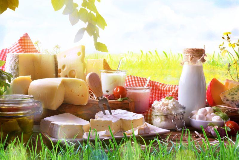 Milchprodukte in der No Carb Ernährung