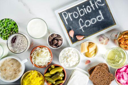 Probiotische Lebensmittel verbessern die Nährstoffaufnahme im Darm