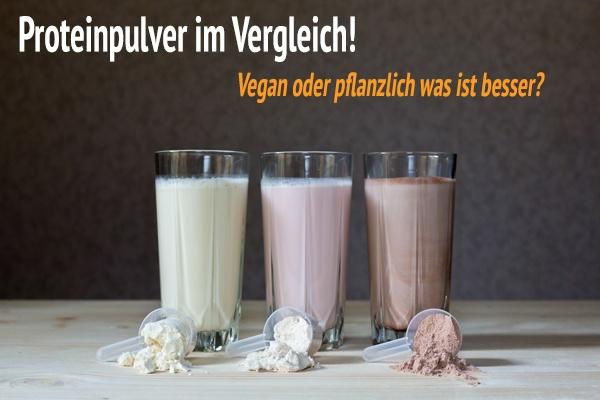 Proteinpulver vergleich was ist besser? Tierisches oder pflanzliches Protein?