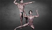 Die Bodybuilding Geschichte