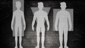 Körpertypen im Bodybuilding und Fitness