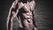 Wettkampfvorbereitung im Bodybuilding und Fitness