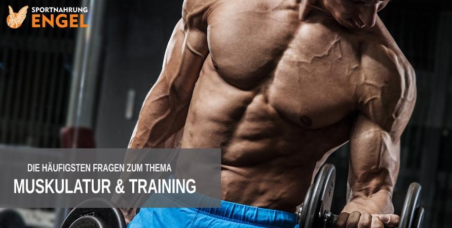 Häufige Fragen zu Training und Muskulatur