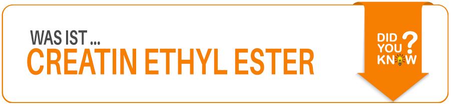 Creatin Ethyl Ester Wirkung Dosierung und Nebenwirkungen