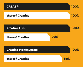 CREAZ Creatin Kapseln
