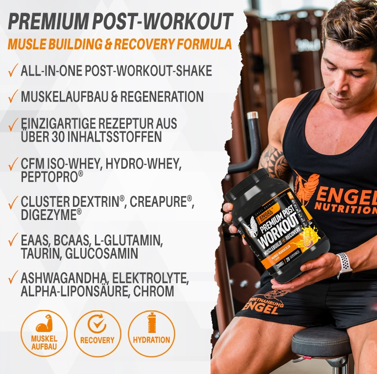 Banner Engel Nutrition Premium Post Workout LG
