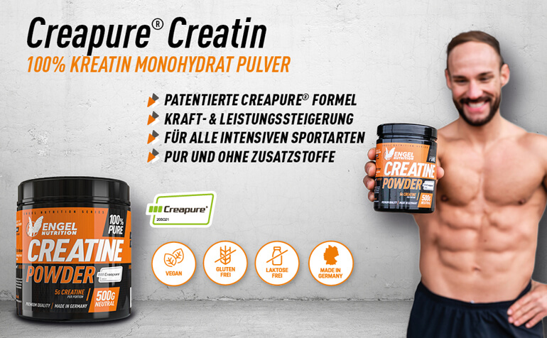 Engel Nutrition Banner Creatin