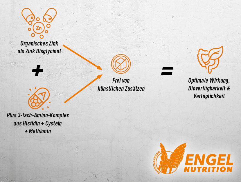 Engel Nutrition Zinc hohe Bioverfügbarkeit XS