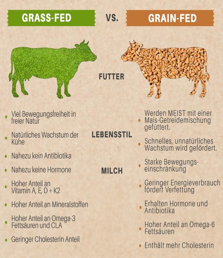 Unterschiede und Vorteile von Grass Fed zu Grain Feed Kühen