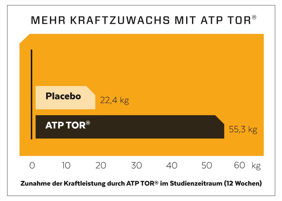 ATP für mehr Kraft