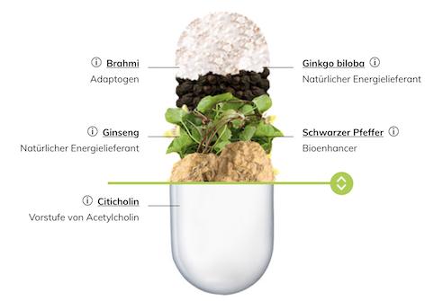 Focus Kapseln von Braineffect mit natürlichen Zutaten