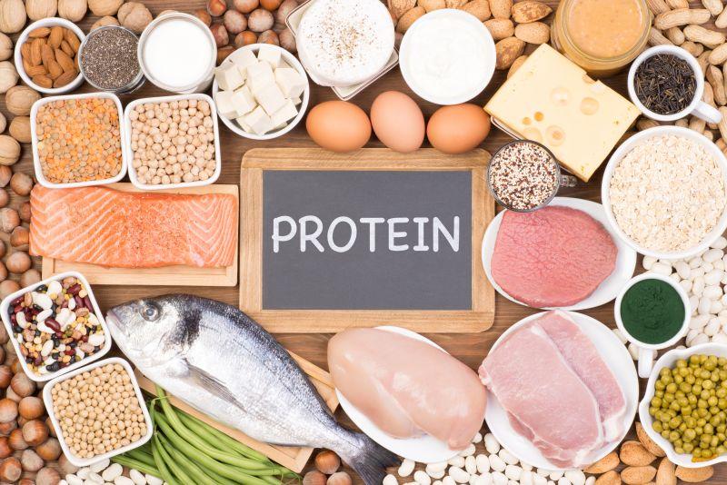Pflanzliche und tierische Proteinquellen für die Buddha Bowl zum Muskelaufbau