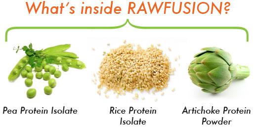 Proteinquellen RAW Fusion Vegan Protein
