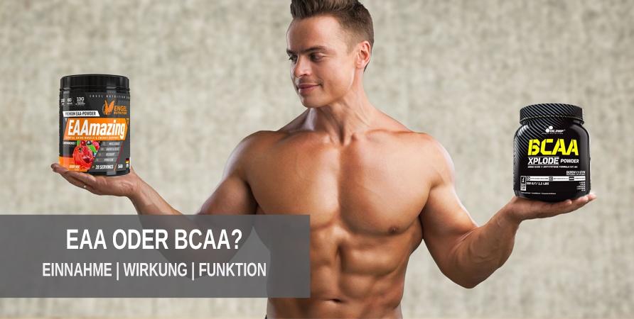 Der Vergleich von EAAs und BCAAs