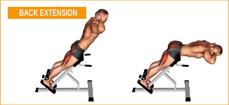Tiefenmuskulatur mit der Übung Back Extension trainieren