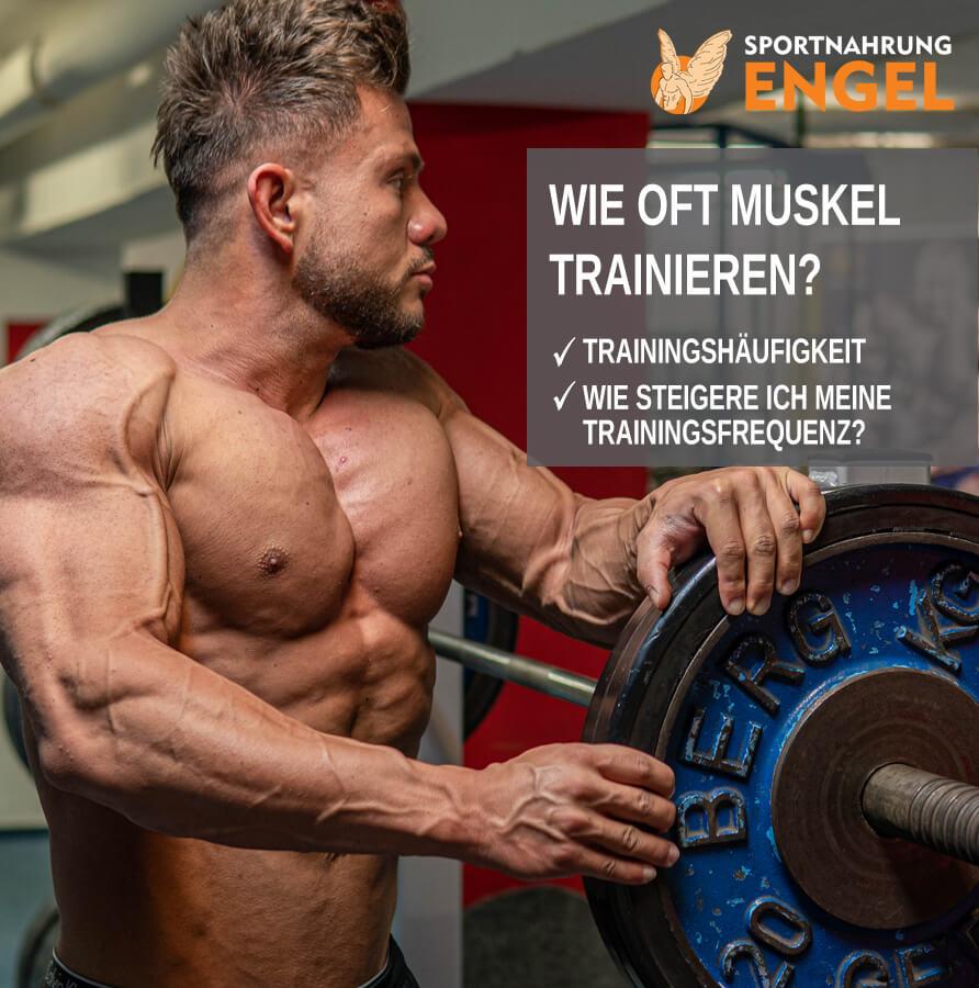 Trainingshäufigkeit - Wie oft sollte ich meinen Muskel trainieren?