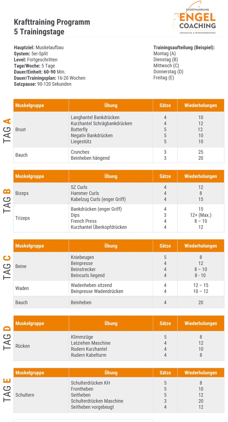 5 Trainingstage Kraftsport Programm