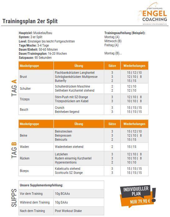 Zyzz 4er Split Trainingspläne Trainingssysteme Seite 2