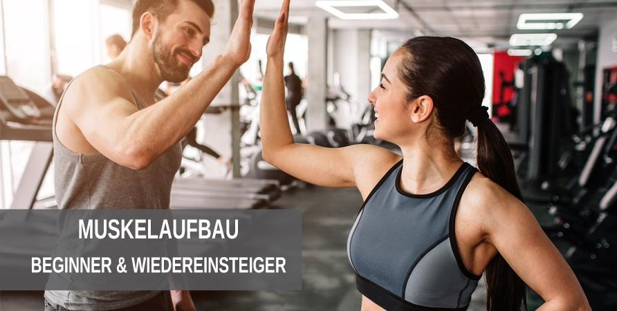 Beginner Trainingspläne zum Muskelaufbau