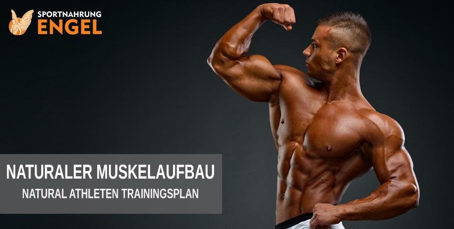 Muskelaufbau Trainingsplan für Naturale Athleten