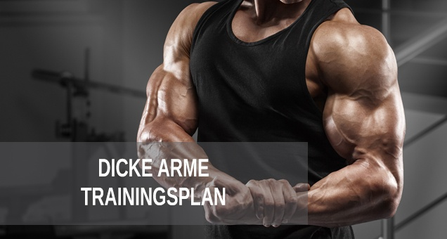 Trainingsplan Dicke Arme. Armtraining in Bodybuilding und Fitness