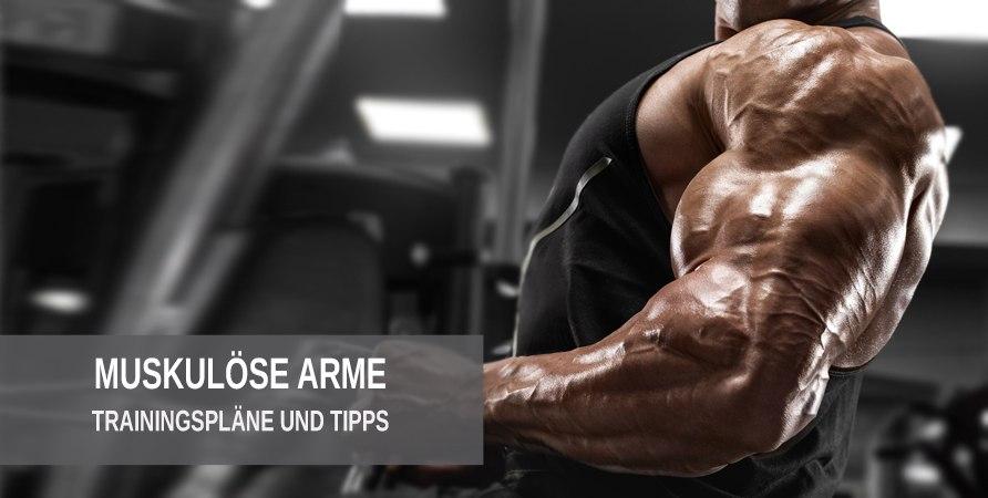 Muskulöse Arme mit diesen Trainingsplänen