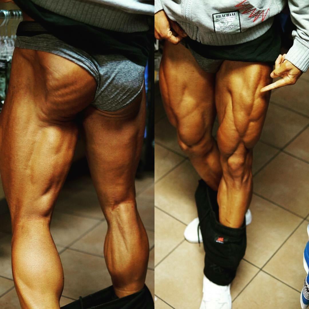 Gestreifte und tiefe Beinmuskeln